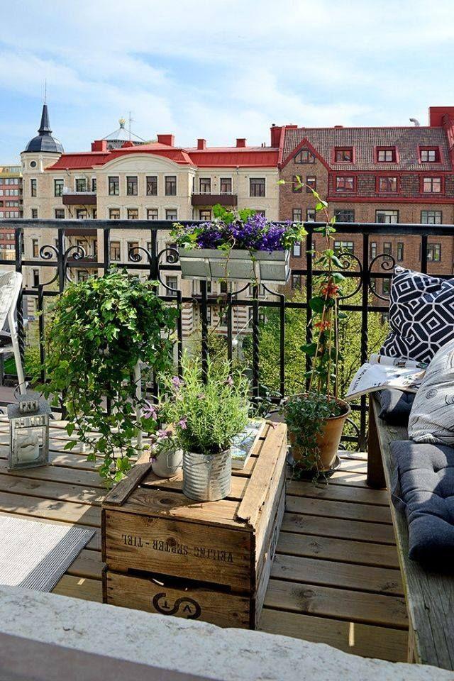 Flores de colores para tu terraza más primaveral