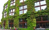 jardin_vertical_patrickblanc