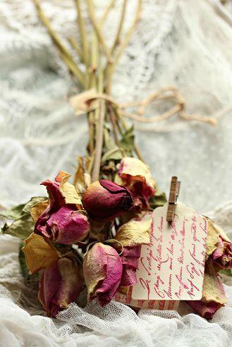 5 ideas para conservar tus rosas de Sant Jordi
