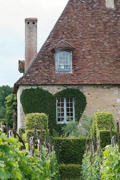 Existen diferentes formas de decorar con hiedra una casa: desde creando diferentes formas hasta cubrirla al completo