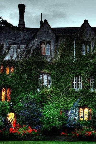 Los jardines verticales como los creados por hiedras en las casas de forma natural están de moda y tienen numerosas ventajas