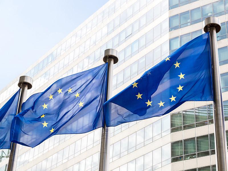targeta profesional europea