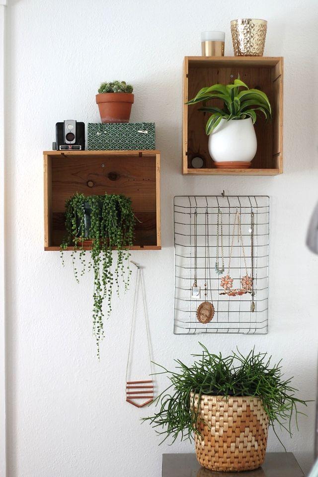 decoración plantas interior