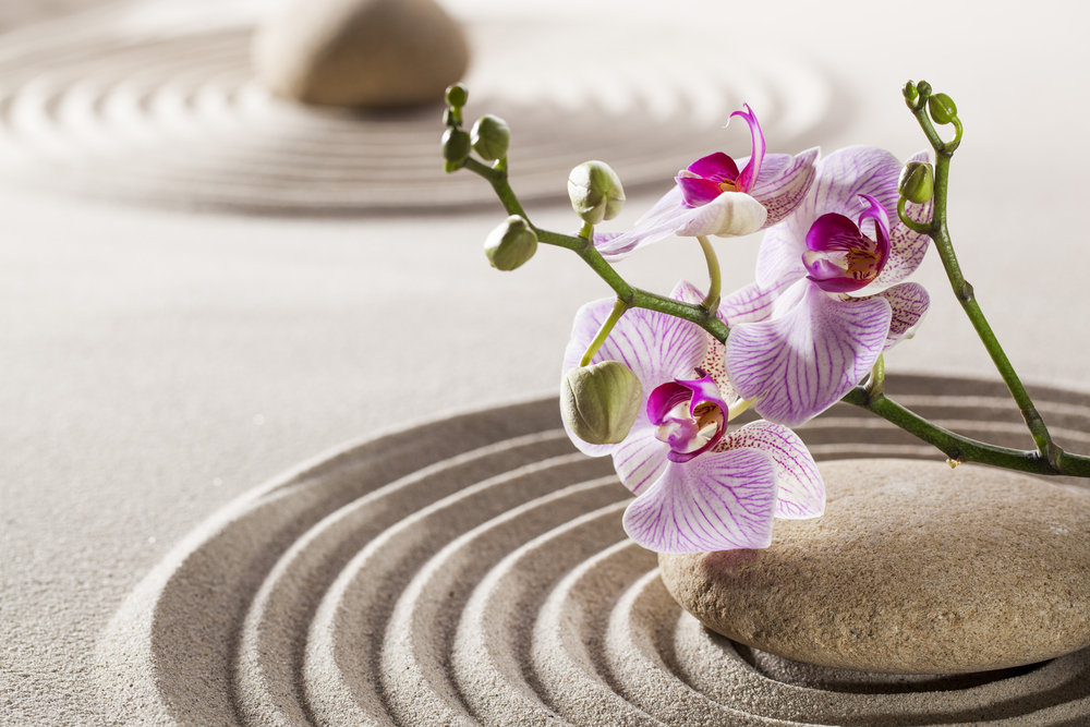 decoracion-zen
