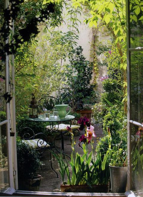 casa-terraza-plantas