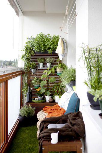 Ideas para decorar balcones peque os - Jardin vertical terraza ...